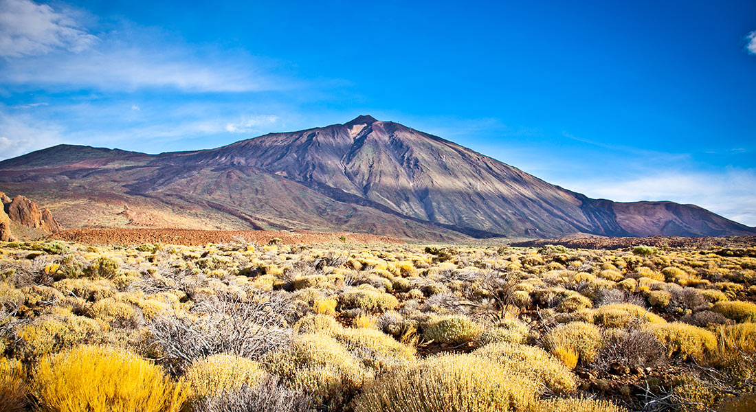 discover the natural paradise of tenerife